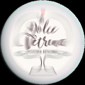 300x300_logo_Dolce_FX